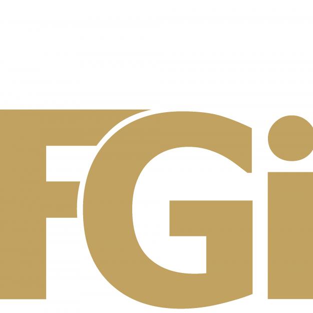FGi Inc FZE